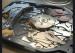 如何在Seagate F3硬盘上隐藏坏扇区